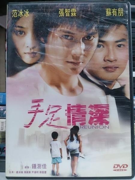 挖寶二手片-Y82-037-正版DVD-華語【手足情深】-范冰冰 蘇有朋 張智霖