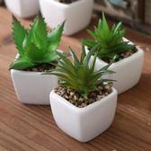 創意家居客廳桌面辦公桌植物擺設仿真多肉小盆栽擺件盆景軟裝飾品  igo 卡布奇諾