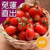 沁甜果園SSN. 玉女小番茄(4台斤/箱)【免運直出】