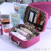 化妝盒化妝包大容量化妝品收納盒簡約小號便攜手提箱淑女可愛防水旅行袋 蘿莉小腳丫