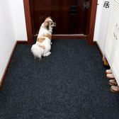 入門地墊進門地墊門口客廳門墊