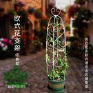 園藝爬藤架 花支架 龜甲龍 多肉植物 鐵線蓮月季 綠蘿 歐式 NMS 樂活生活館