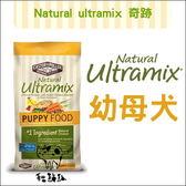 Ultramix奇跡〔幼母犬,15磅〕