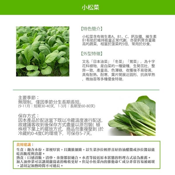 【有機認證生鮮時蔬】小松菜 ( 250g /包)