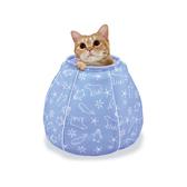【MARUKAN】貓咪涼感床-水壺造型(CT-405)