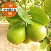 柚是我果園・金賞50年麻豆老欉文旦10斤裝1盒【搶先預購】