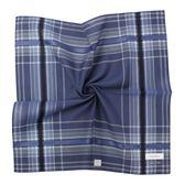 CalvinKlein 格紋紳士純棉帕巾(藍紫色)989091-247