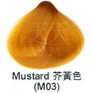 【特殊色專家】果酸彩色染髮霜 85ml (M03_介黃色) [40797]