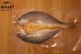 【禧福水產】黃魚一夜干/整隻◇$特價159元/包/300g±10%◇最低價竹莢魚熱炒日本料理團購可批發