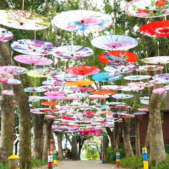 古風油紙傘女漢服道具傘