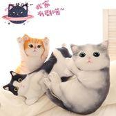 618大促 可愛仿真貓咪毛絨公仔抱枕韓國搞怪3d立體喵星人抱著睡覺娃娃女生【櫻花本鋪】