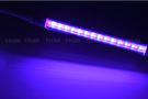 6W LED植物燈 紅藍光...