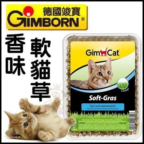 *WANG*德國 GIMPET 竣寶 香味軟貓草(盒裝) DIY新鮮貓草100g