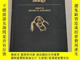 二手書博民逛書店Orang-utan罕見Biology(猩猩生物學)精裝沒勾畫Y6318 JEFFREY H. SCHWART