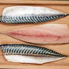 ㊣盅龐水產 ◇挪威鯖魚一夜干17P(裕珍...