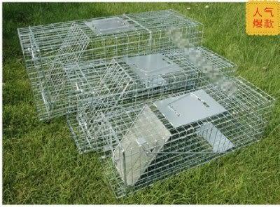 誘捕籠捕貓器折疊式 高靈敏度 S 號【藍星居家】