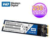 WD 威騰 S250G1B0B 250GB 固態硬碟M.2(藍標)