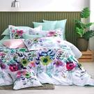 鴻宇 SUPIMA500織 四件式雙人薄被套床包組 絢爛彩境 台灣製2176