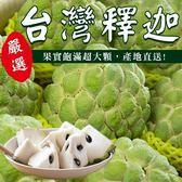 【WANG-全省免運】台東特大顆釋迦X10台斤(約7-8入