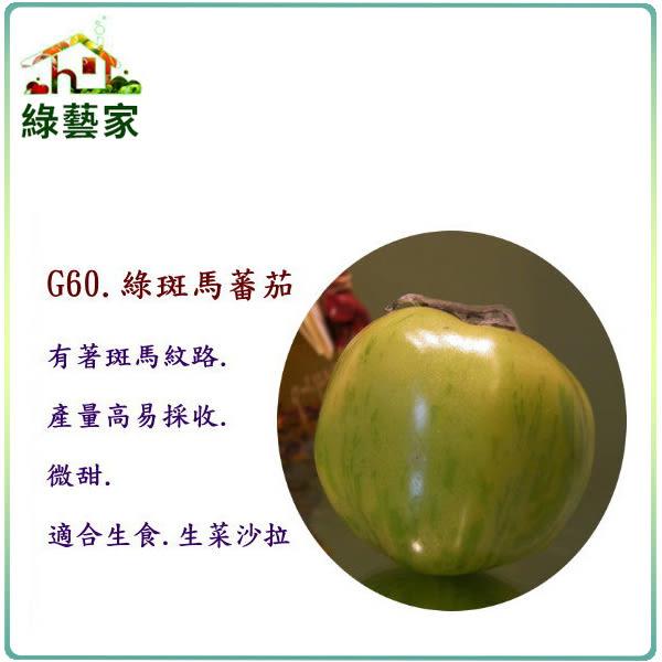 【綠藝家】G60.綠斑馬蕃茄種子15顆