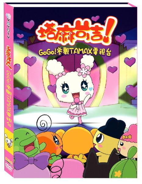 (特價) 塔麻可吉 : GOGO! 參觀 TAMAX 電視台 DVD (音樂影片購)