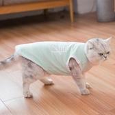 貓咪衣服加菲貓防掉毛幼貓無毛貓寵物藍貓秋冬裝加厚保暖英短小貓