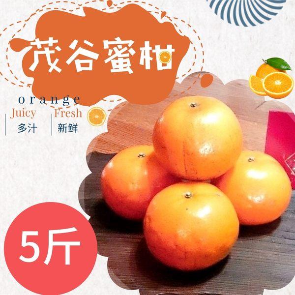 大吉大利*吉園圃大湖茂谷蜜柑(25A)5斤(約15-17粒)(免運宅配)