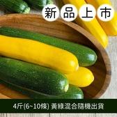 【福山農場】阿里山有機櫛瓜 (4斤/6~10條)