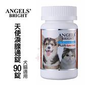 美國Angels' Bright天使牌 淚腺通錠 90錠 犬貓適用*KING*