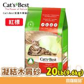 德國凱優CAT BEST 木屑砂(凝結紅標)20L(9. 6kg)【寶羅寵品】