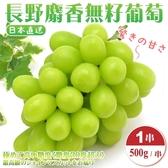 【果之蔬-全省免運】日本長野縣溫室麝香葡萄 每串約500公克±10%【1串】
