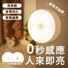 12燈珠 LED 雙色切換 冷暖燈 US...