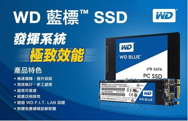WD 藍標 BLUE 250GB M.2 2280 SATA SSD 固態硬碟