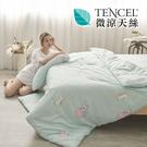 [小日常寢居]#HT017#絲柔親膚奧地利TENCEL天絲4.5x6.5尺單人薄被套(台灣製)萊賽爾Lyocell