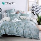 天絲 Tencel 小伙伴 床包冬夏兩用被 加大四件組  100%雙面純天絲 伊尚厚生活美學