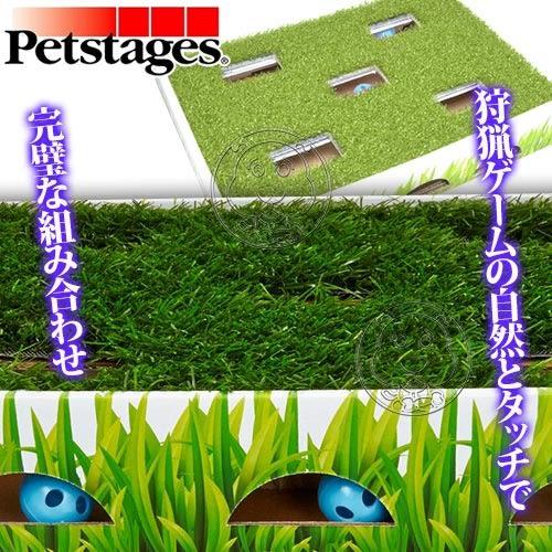 【zoo寵物商城】 美國petstages》708戶外模擬狩獵草地迷蹤球貓玩具/個