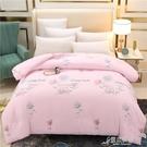 棉被 廠商直銷新款天然新疆棉花被 秋冬棉花保暖被子被芯 YYJ【快速出貨】
