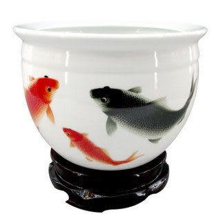 景德鎮 養魚盆