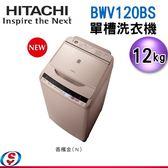【信源】12公斤 HITACHI日立 直立式洗衣機 BWV120BS