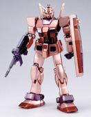 鋼彈模型 PG 1/60 RX-78/C.A. 凱斯巴爾專用機 電鍍Ver. TOYeGO 玩具e哥
