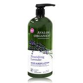 新包裝 - 美國 Avalon Organics薰衣草滋潤精油乳液(家庭號) 32oz/907g
