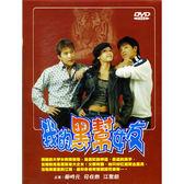 韓劇 - 我的黑幫女友DVD (全20集) 江聖妍/柳時元