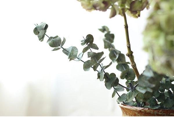 乾燥花 尤加利 單支 百搭神葉 永生花 仿真花 素材 不凋花 人造花 乾燥花束 花藝設計 婚禮佈置