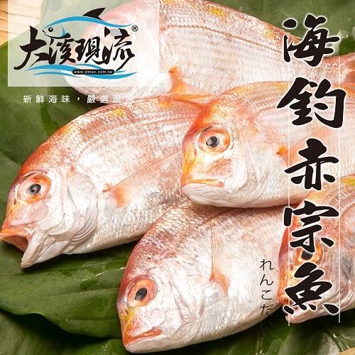 野生海釣 赤鯮魚 ( 小尾 150g±10%  尾 ) 【大溪現流】