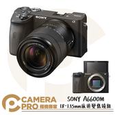 ◎相機專家◎ SONY A6600M 18-135mm 旅遊變焦鏡組 ILCE-6600M 4K錄影 五軸防手震 公司貨
