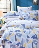 ✰雙人 薄床包兩用被四件組✰ 100%純天絲《沛斯里》