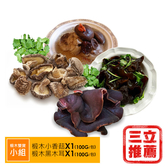 【盈盈農圃】有機台灣椴木雙寶組(香菇/黑木耳)(小組)-電電購