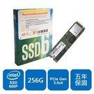 【綠蔭-免運】Intel 600p-SSDPEKKW256G7X1(M.2 2280 PCIe)