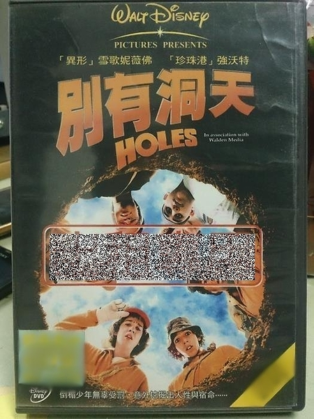 挖寶二手片-P50-010-正版DVD-電影【別有洞天/Holes】-絕命追殺令導演*銀河追緝令-雪歌妮薇佛(直購