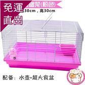 松鼠籠子松鼠籠荷蘭鼠專用蜜袋鼯倉鼠裸籠大號窩花枝鼠小飛鼠大
